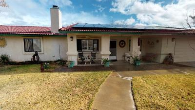 Hesperia Single Family Home For Sale: 10625 Fifth Avenue