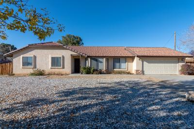 Apple Valley Single Family Home For Sale: 19248 Shoshonee Road
