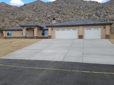 Apple Valley Single Family Home For Sale: 15831 Rimrock Road