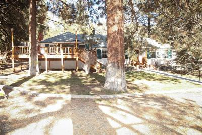Wrightwood Single Family Home For Sale: 1036 Hwy 2
