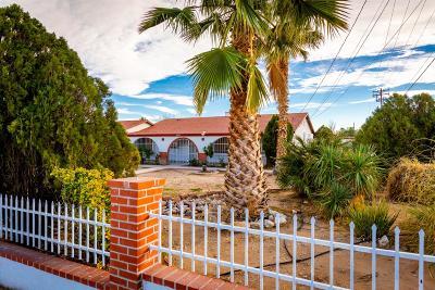 Victorville Single Family Home For Sale: 15317 Jasmine Street