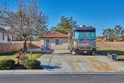 Apple Valley Single Family Home For Sale: 11620 Wedgewood Drive