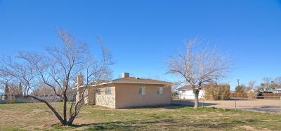 Apple Valley Single Family Home For Sale: 23184 Pahute Road