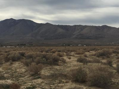 Lucerne Valley CA Residential Lots & Land For Sale: $14,900