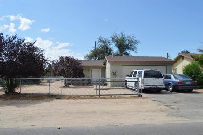 Hesperia Single Family Home For Sale: 16255 Pine Street