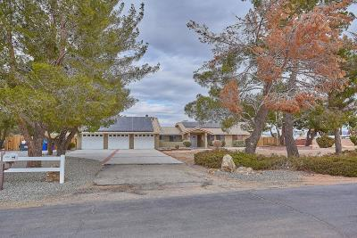 Apple Valley Single Family Home For Sale: 14002 Gayhead Road