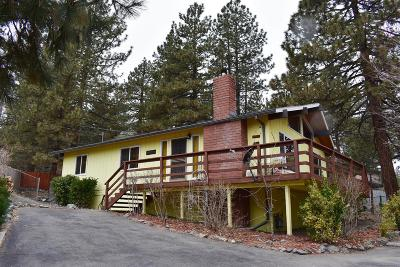 Wrightwood Single Family Home For Sale: 5362 Lone Pine Canyon Road