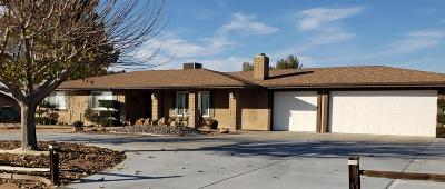 Apple Valley Single Family Home For Sale: 19132 Tehachapi Road