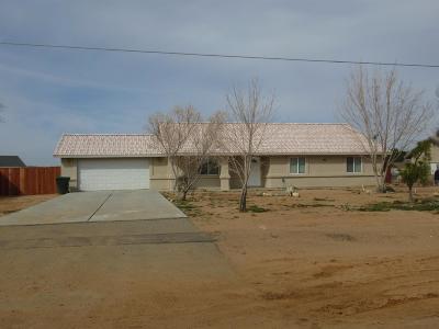 Apple Valley Single Family Home For Sale: 14976 Nanticoke Road