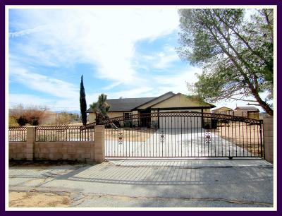Apple Valley Single Family Home For Sale: 21029 Yucca Loma Road