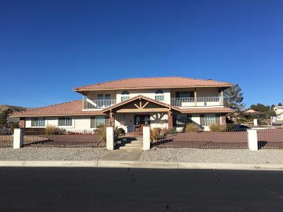 Apple Valley Single Family Home For Sale: 17648 Siskiyou Road