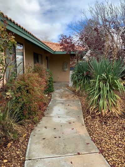 Apple Valley Single Family Home For Sale: 18700 Chaco Lane