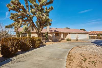 Apple Valley Single Family Home For Sale: 13730 Lakota Road