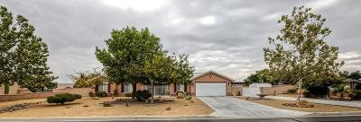 Apple Valley Single Family Home For Sale: 20342 Skyline Ranch Drive