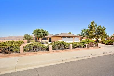 Apple Valley Single Family Home For Sale: 14499 Ramona Circle