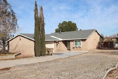 Hesperia Single Family Home For Sale: 19086 Yucca Street
