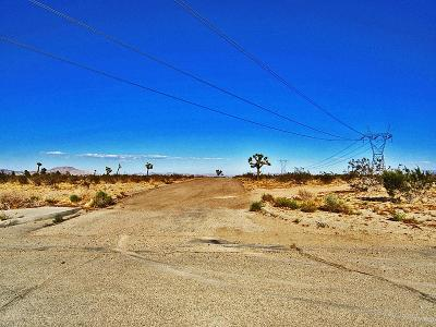 Adelanto Commercial Lots & Land For Sale: Daisy Street