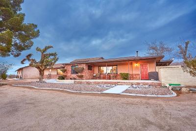 Apple Valley Single Family Home For Sale: 22726 Papago Road