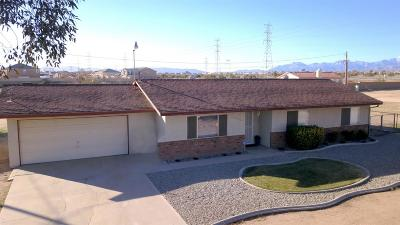 Hesperia Single Family Home For Sale: 13925 Juniper Street