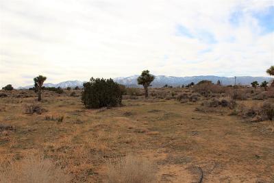 Phelan Residential Lots & Land For Sale: Smoke Tree Road