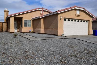Victorville Single Family Home For Sale: 17010 Tivolli Lane