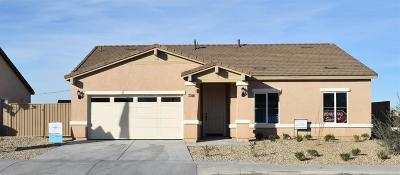 Victorville Single Family Home For Sale: 13325 Via Robles Circle