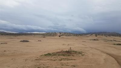 Apple Valley Residential Lots & Land For Sale: Leaping Lizard #3 Lane