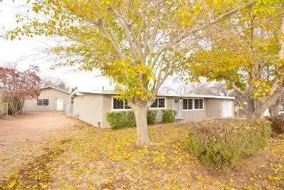 Hesperia Single Family Home For Sale: 18648 Albany Street