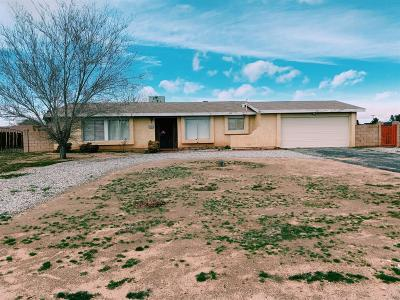 Apple Valley Single Family Home For Sale: 12838 Standing Bear Road