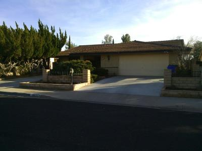 Victorville Single Family Home For Sale: 15859 Nassau Drive
