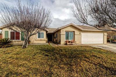 Victorville Single Family Home For Sale: 14150 De Sota Drive