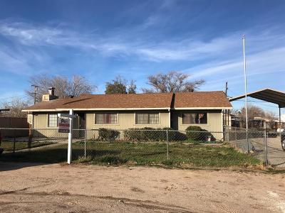 Hesperia Single Family Home For Sale: 16070 Cajon Street