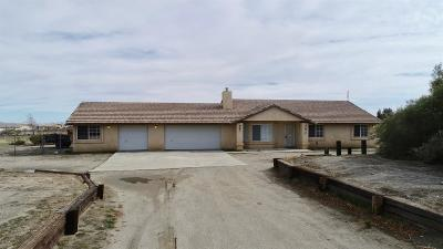 Phelan Single Family Home For Sale: 12973 Riggins Road