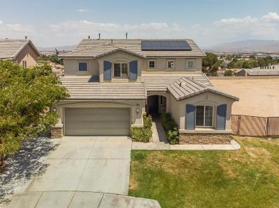 Victorville Single Family Home For Sale: 12663 High Vista Street