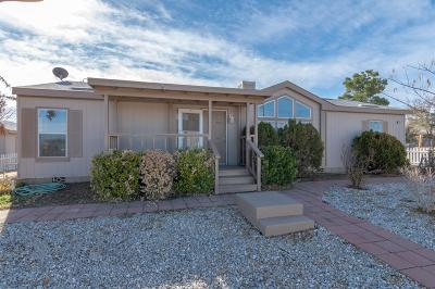 Victorville Single Family Home For Sale: 13015 Begonia Road