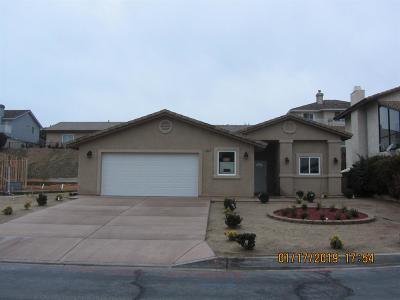 Victorville Single Family Home For Sale: 13350 Yellowstone Avenue