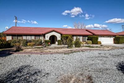 Apple Valley Single Family Home For Sale: 20006 Yucca Loma Road