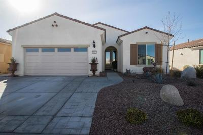 Apple Valley Single Family Home For Sale: 18861 Latigo Street