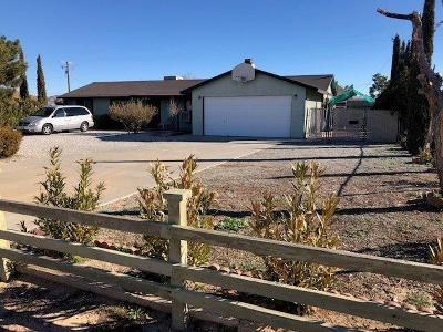 Apple Valley Single Family Home For Sale: 15457 Ute Road