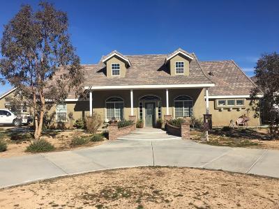 Apple Valley Single Family Home For Sale: 26130 Lancelet Street