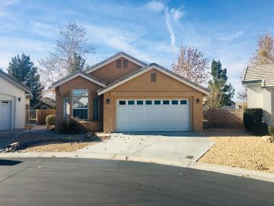 Apple Valley Single Family Home For Sale: 11236 Bunker Circle Circle