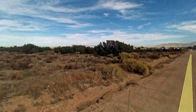 Hesperia CA Residential Lots & Land For Sale: $300,000