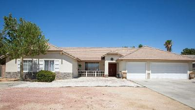 Apple Valley Single Family Home For Sale: 13135 Paraiso Road