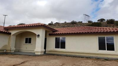 Hesperia Single Family Home For Sale: 7416 Alston Avenue