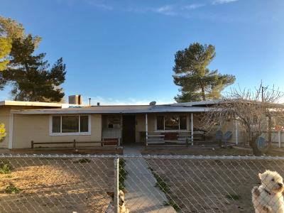 Apple Valley Single Family Home For Sale: 22977 El Centro Road