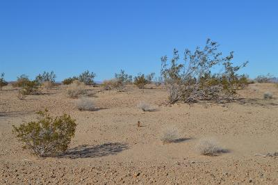 Newberry Springs CA Residential Lots & Land For Sale: $11,888