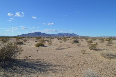Newberry Springs CA Commercial Lots & Land For Sale: $38,888
