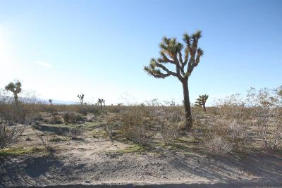 Pinon Hills Residential Lots & Land For Sale: Pionero Road