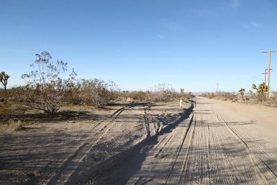 Pinon Hills Residential Lots & Land For Sale: Sacramento Road