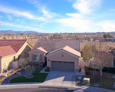 Apple Valley Single Family Home For Sale: 10031 Redstone Road